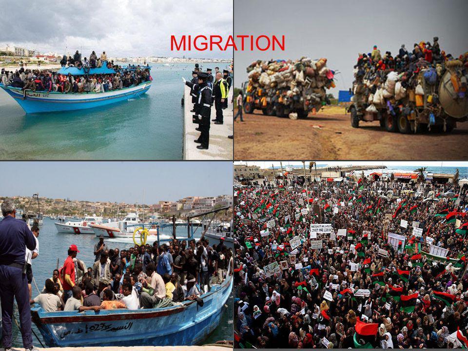 MIGRATION Migration