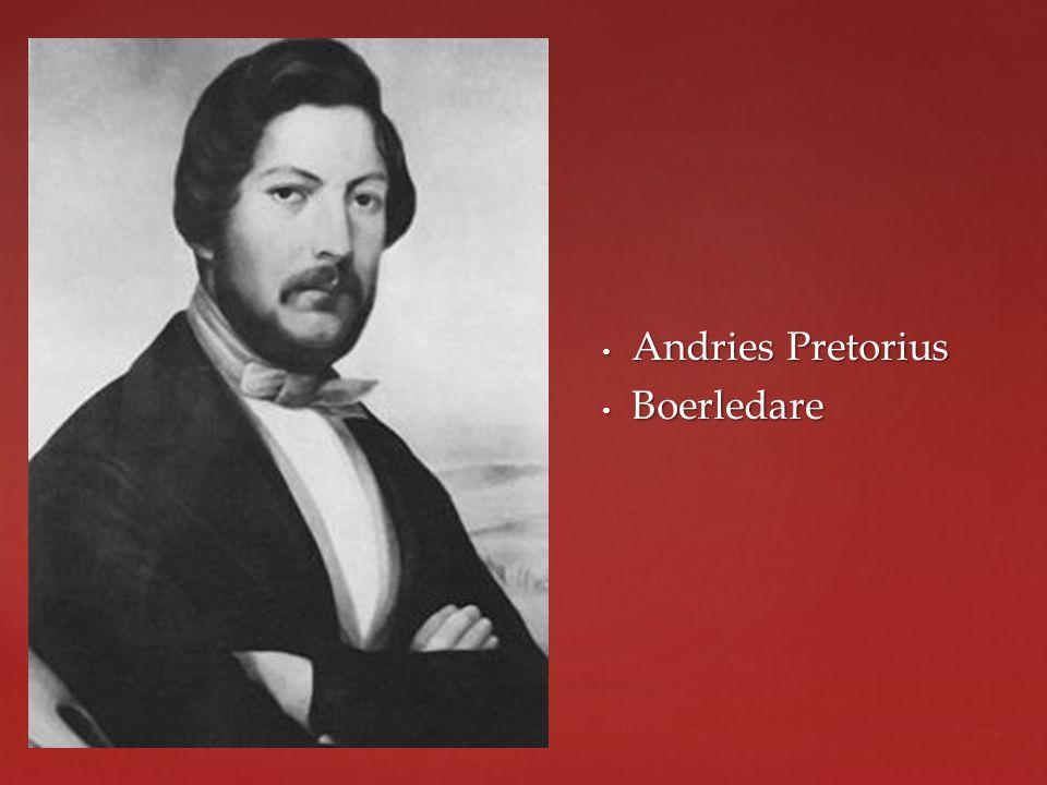 Andries Pretorius Boerledare