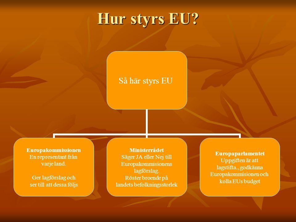Hur styrs EU