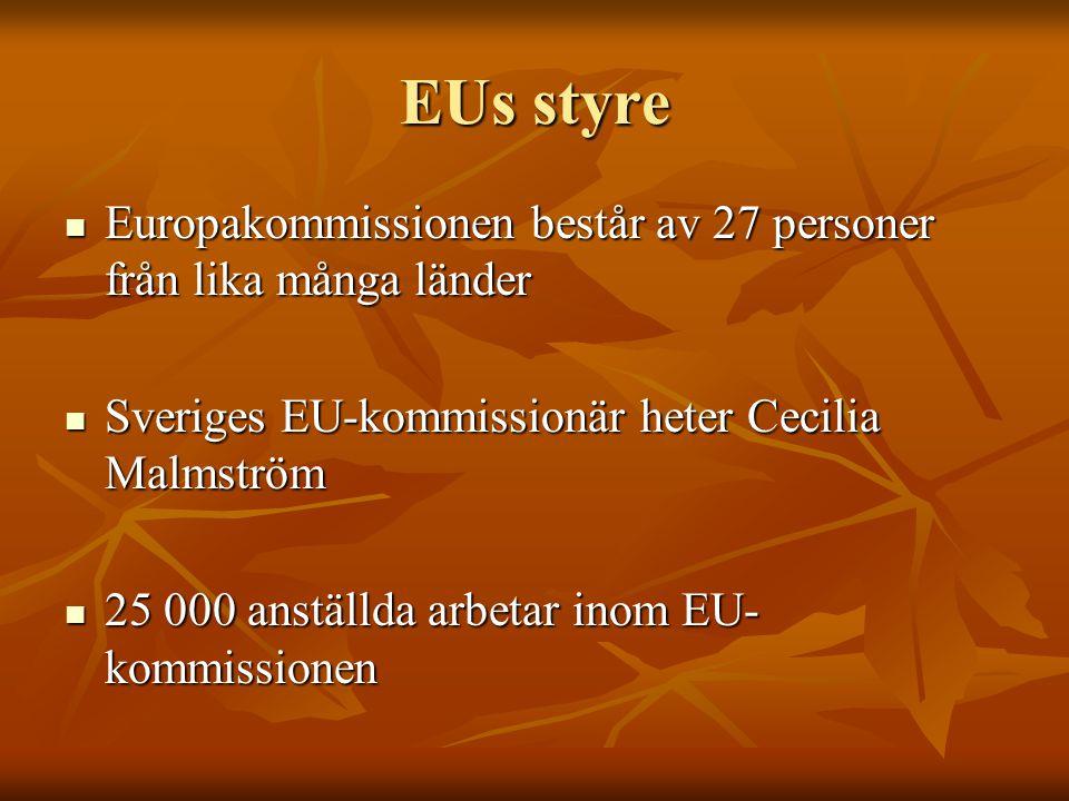EUs styre Europakommissionen består av 27 personer från lika många länder. Sveriges EU-kommissionär heter Cecilia Malmström.