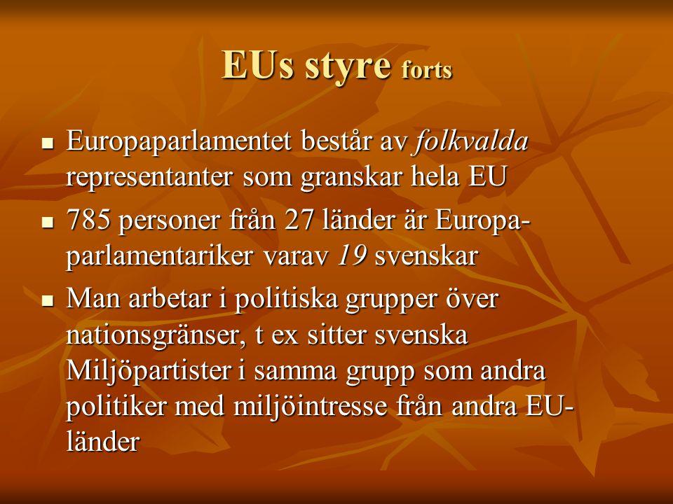 EUs styre forts Europaparlamentet består av folkvalda representanter som granskar hela EU.