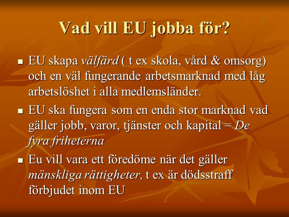 Vad vill EU jobba för EU skapa välfärd ( t ex skola, vård & omsorg) och en väl fungerande arbetsmarknad med låg arbetslöshet i alla medlemsländer.