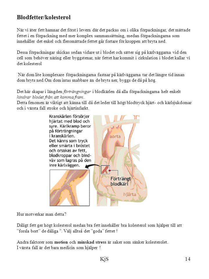 Blodfetter/kolesterol