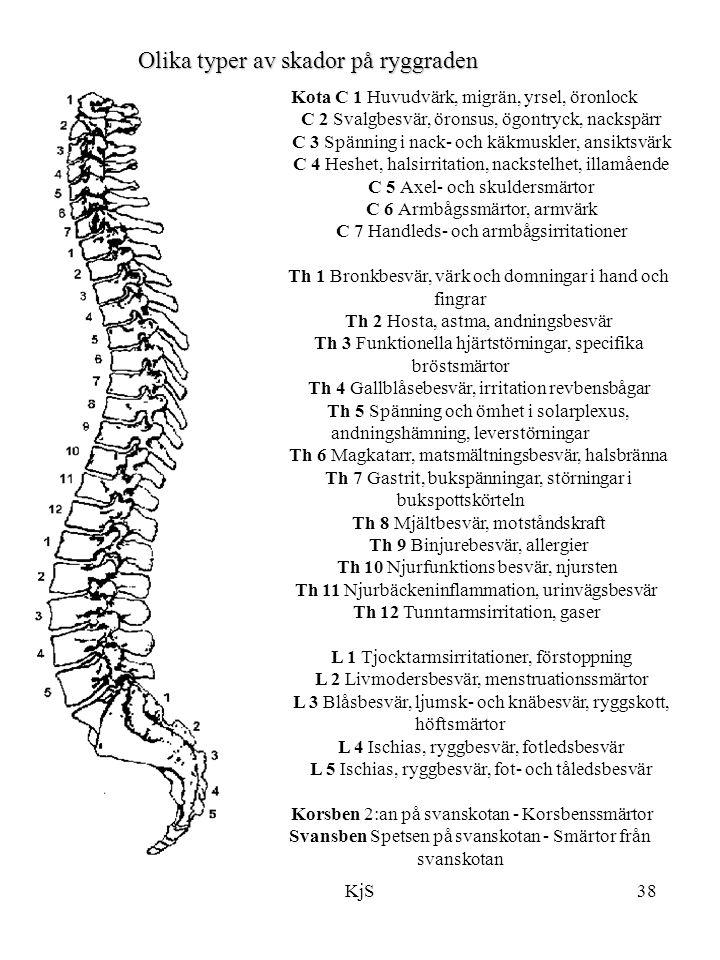 Olika typer av skador på ryggraden