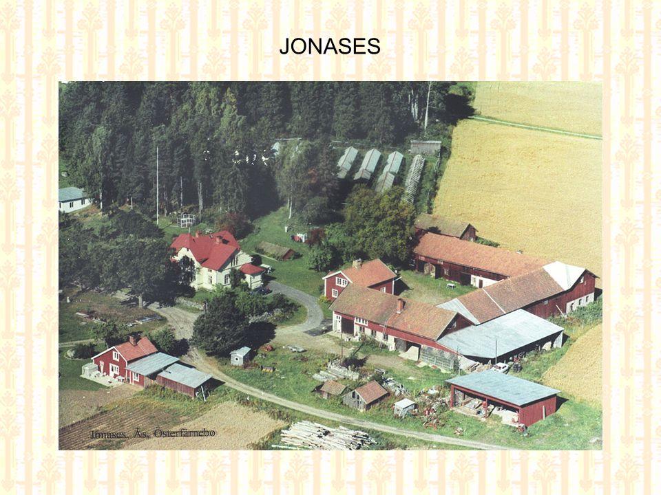 JONASES