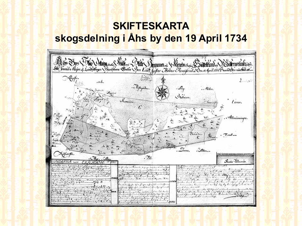 skogsdelning i Åhs by den 19 April 1734