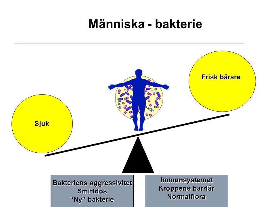 Bakteriens aggressivitet