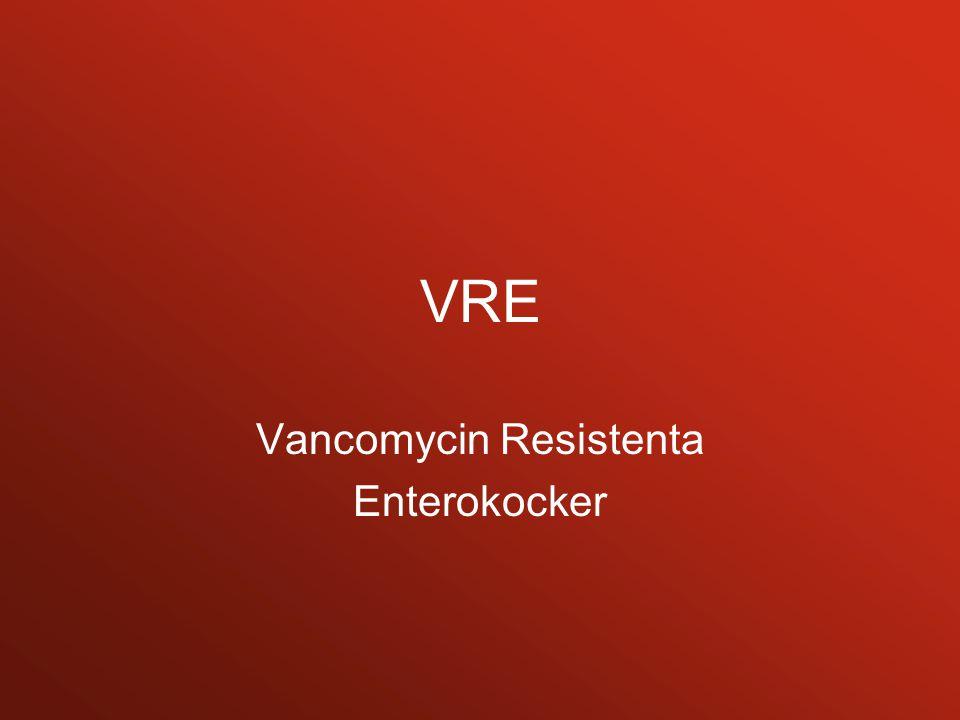 Vancomycin Resistenta Enterokocker