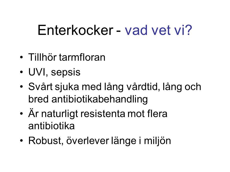 Enterkocker - vad vet vi