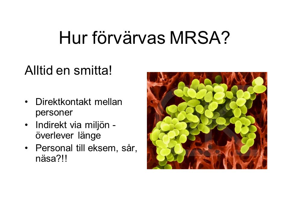 Hur förvärvas MRSA Alltid en smitta! Direktkontakt mellan personer