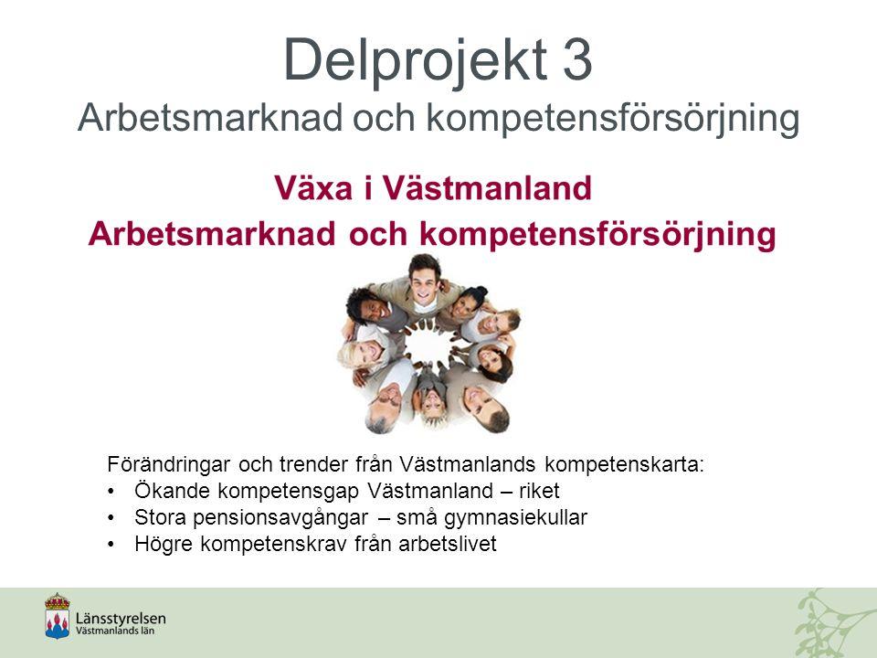Delprojekt 3 Arbetsmarknad och kompetensförsörjning