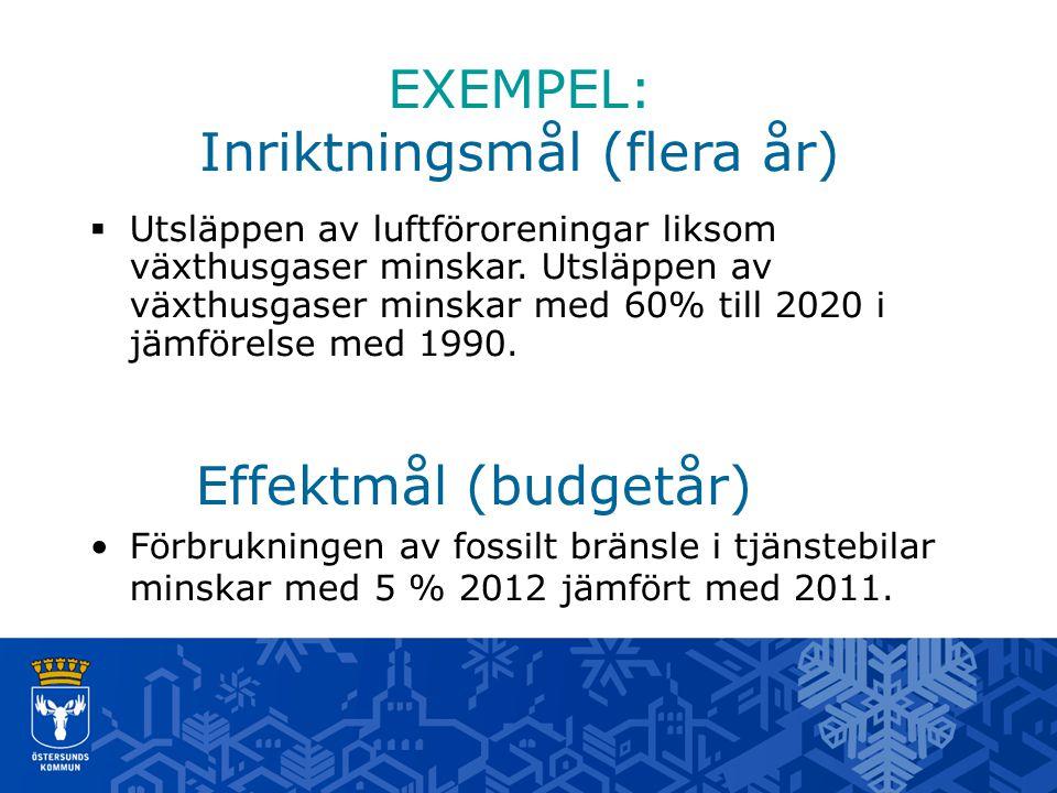EXEMPEL: Inriktningsmål (flera år)