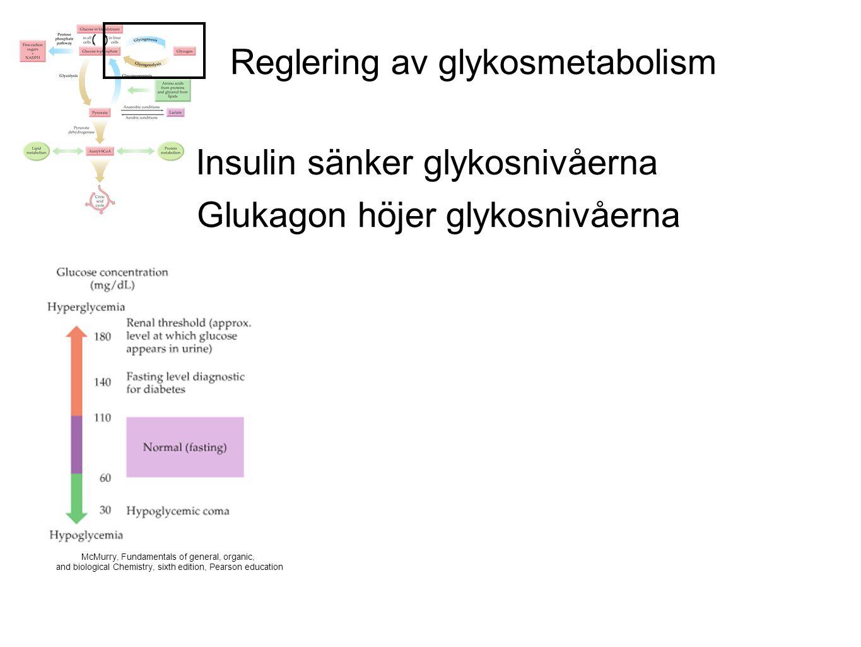Reglering av glykosmetabolism