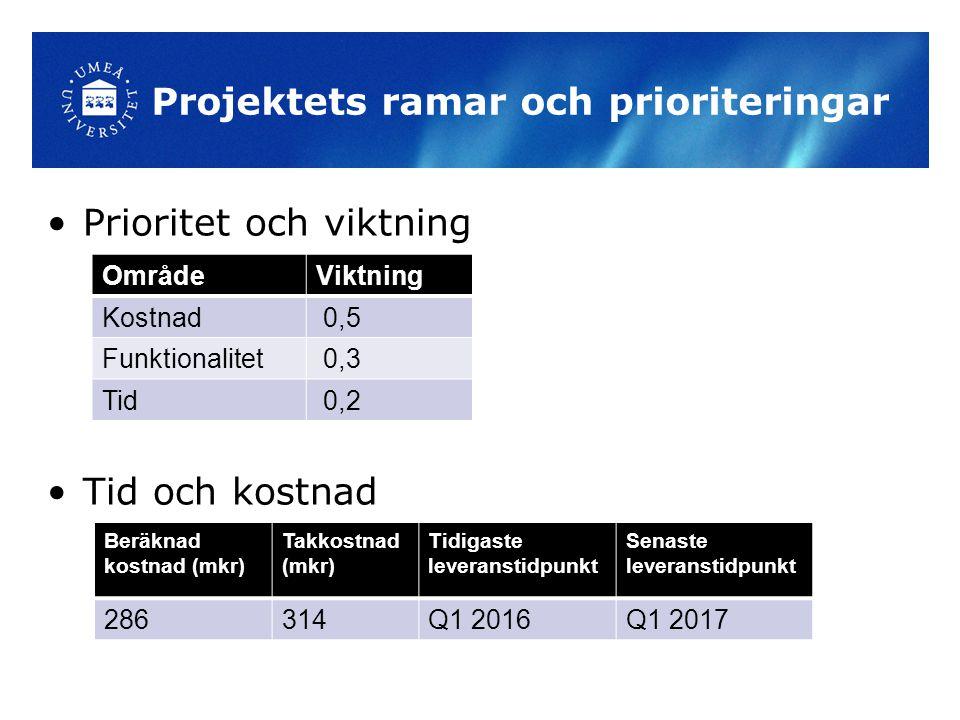 Projektets ramar och prioriteringar