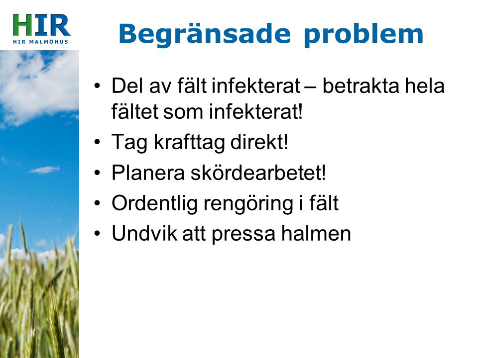 Begränsade problem Del av fält infekterat – betrakta hela fältet som infekterat! Tag krafttag direkt!