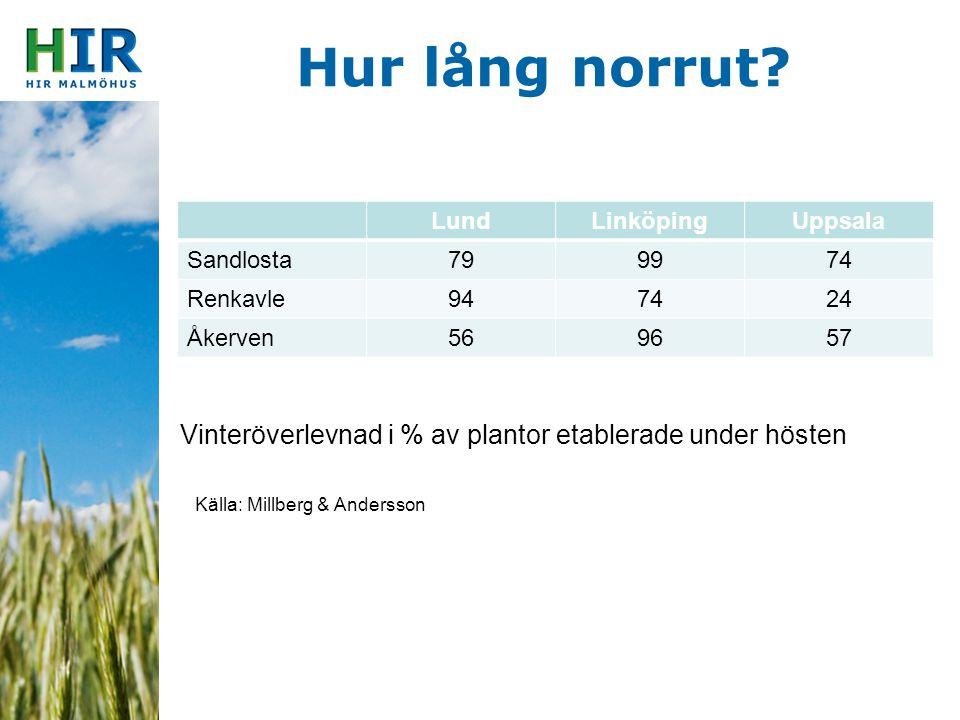 Hur lång norrut Lund. Linköping. Uppsala. Sandlosta. 79. 99. 74. Renkavle. 94. 24. Åkerven.