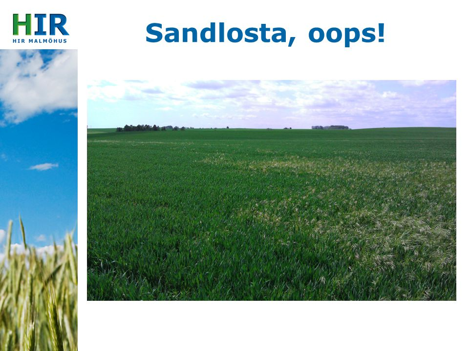 Sandlosta, oops!