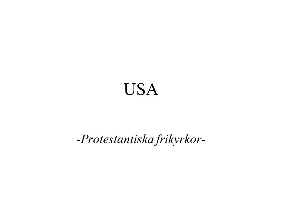 -Protestantiska frikyrkor-