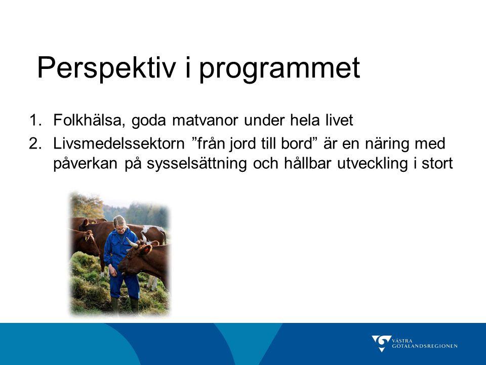 Perspektiv i programmet