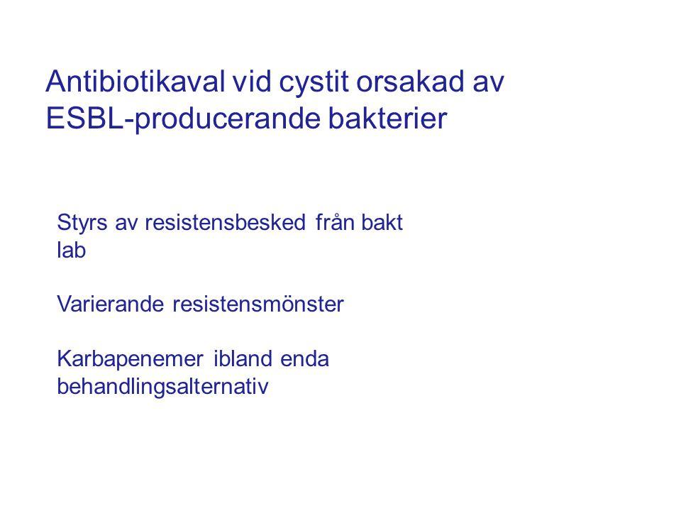 Antibiotikaval vid cystit orsakad av ESBL-producerande bakterier