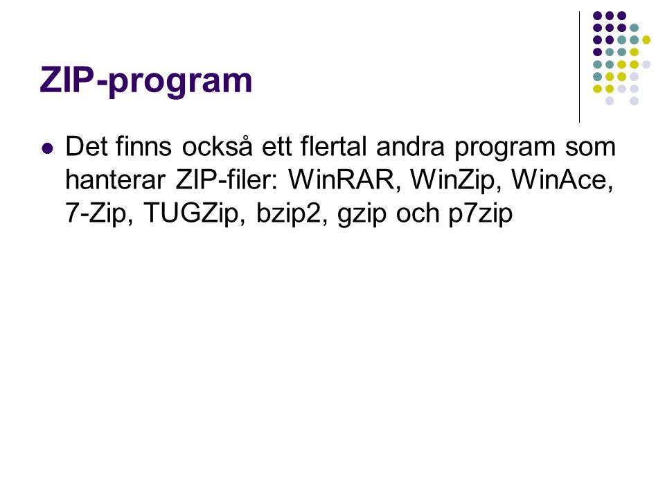 ZIP-program Det finns också ett flertal andra program som hanterar ZIP-filer: WinRAR, WinZip, WinAce, 7-Zip, TUGZip, bzip2, gzip och p7zip.