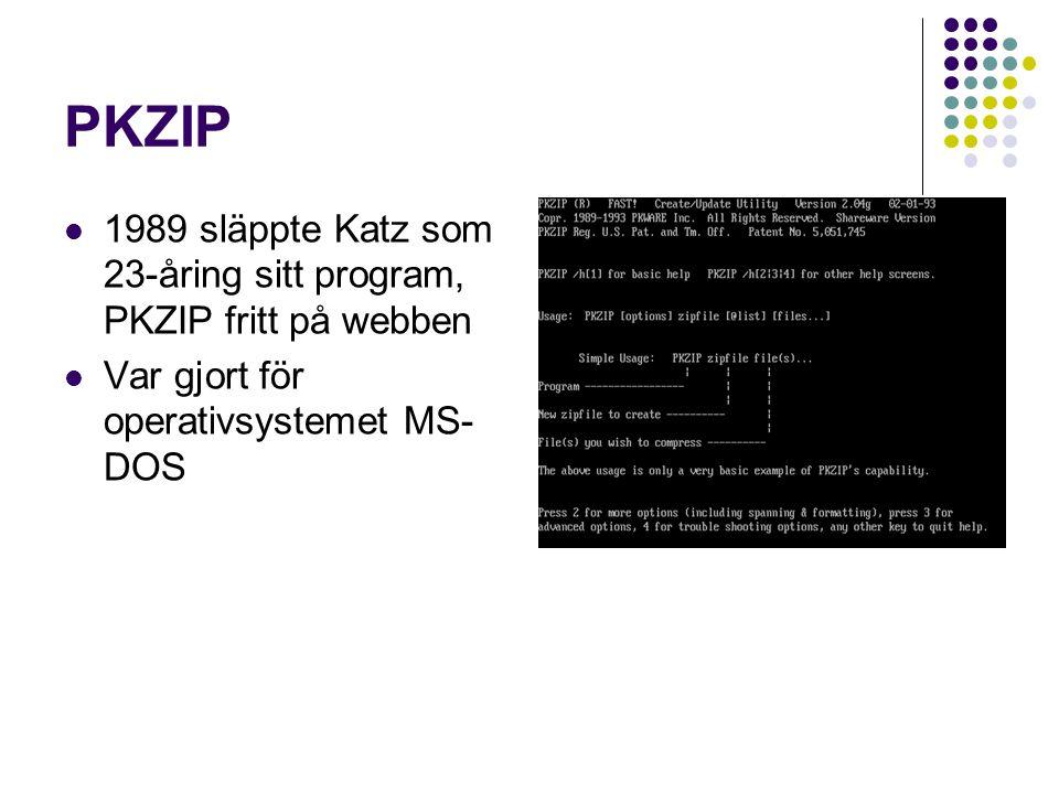 PKZIP 1989 släppte Katz som 23-åring sitt program, PKZIP fritt på webben.