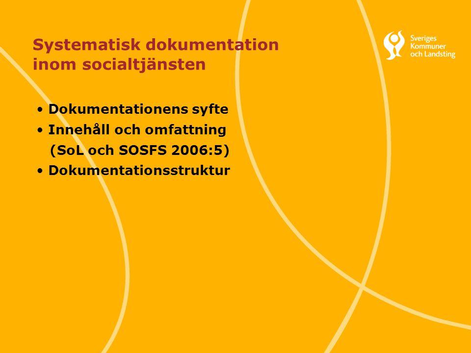 Systematisk dokumentation inom socialtjänsten