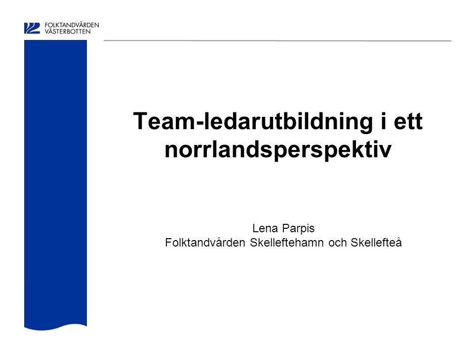 Team-ledarutbildning i ett norrlandsperspektiv