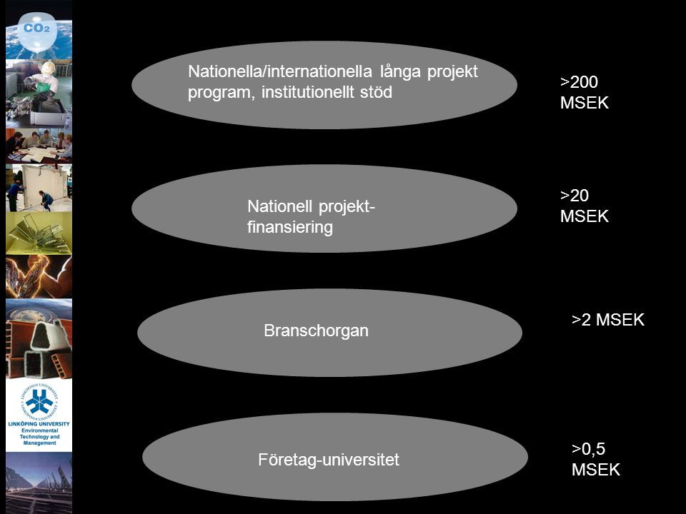 Nationella/internationella långa projekt program, institutionellt stöd