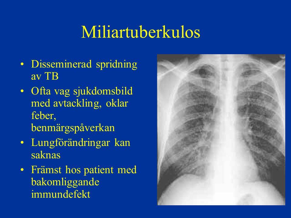 Miliartuberkulos Disseminerad spridning av TB