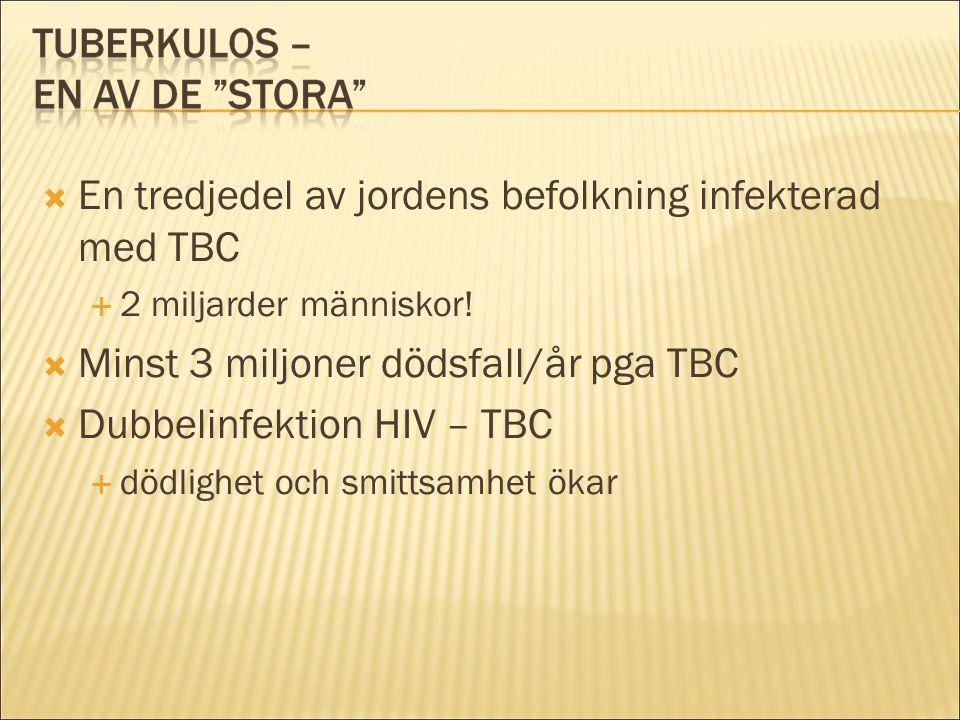 En tredjedel av jordens befolkning infekterad med TBC