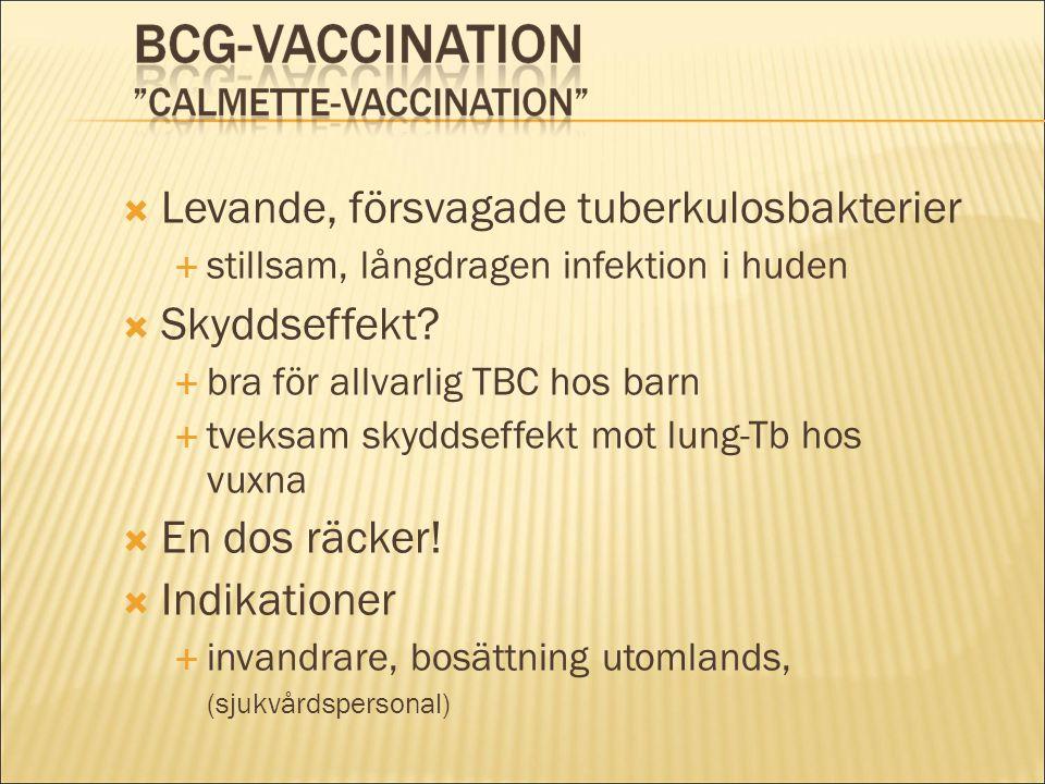Levande, försvagade tuberkulosbakterier Skyddseffekt