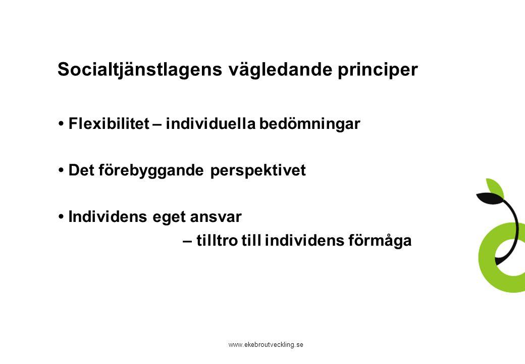 Socialtjänstlagens vägledande principer