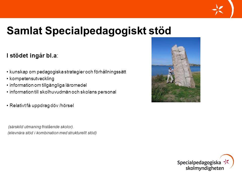Samlat Specialpedagogiskt stöd