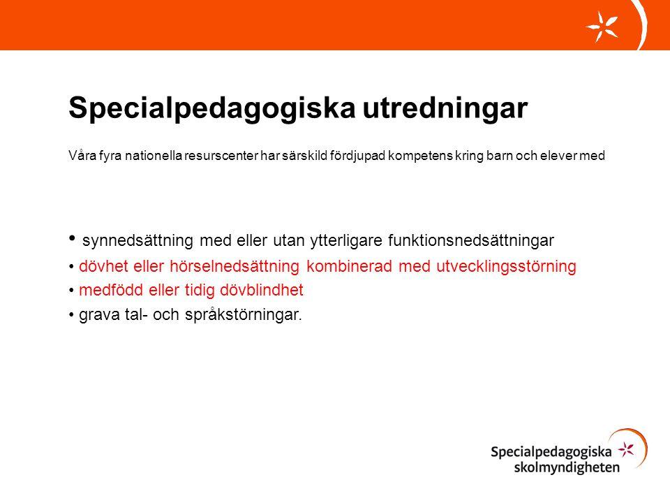 Specialpedagogiska utredningar