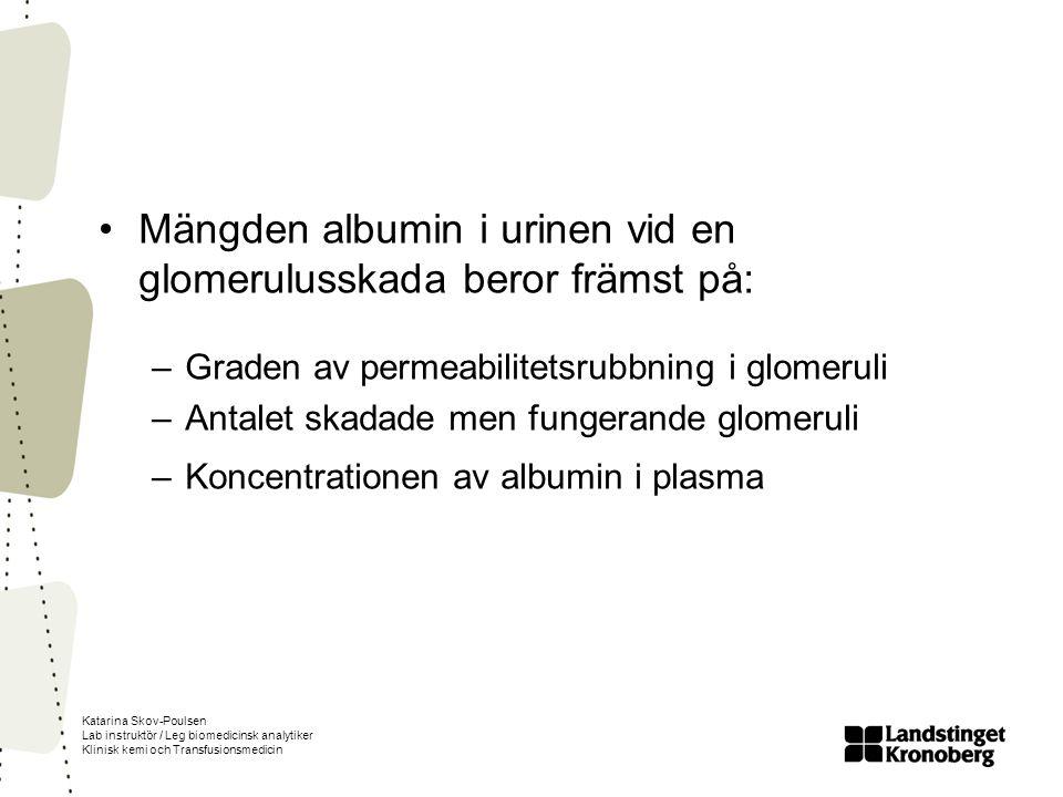 Mängden albumin i urinen vid en glomerulusskada beror främst på: