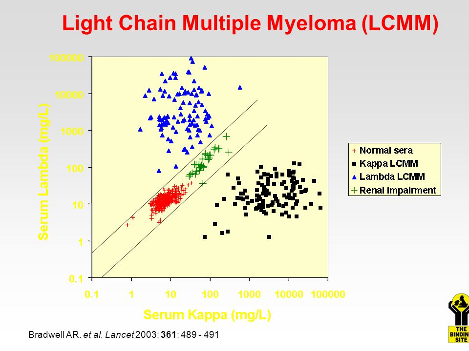Light Chain Multiple Myeloma (LCMM)