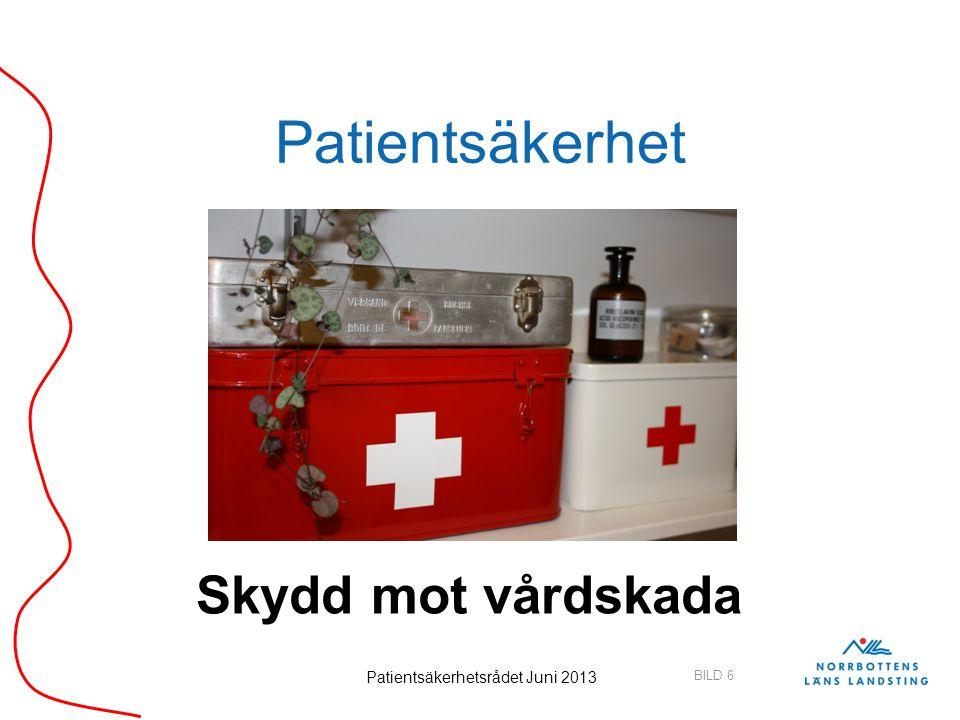 Patientsäkerhetsrådet Juni 2013