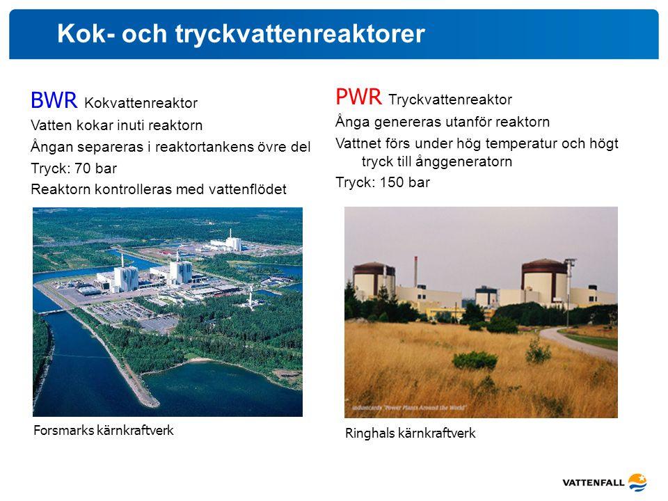 Kok- och tryckvattenreaktorer