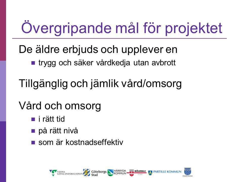 Övergripande mål för projektet