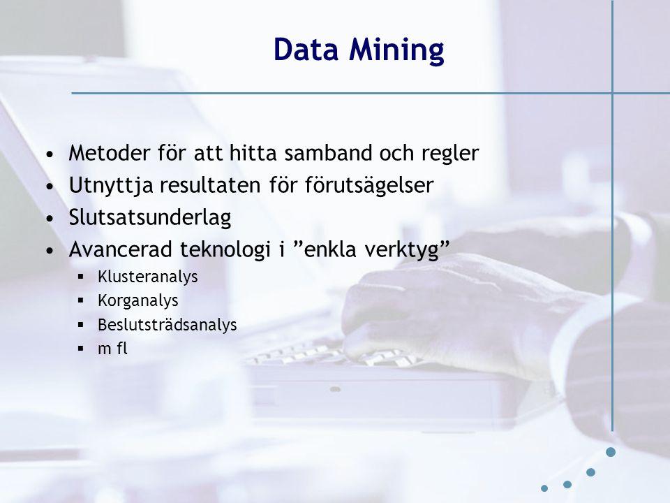 Data Mining Metoder för att hitta samband och regler