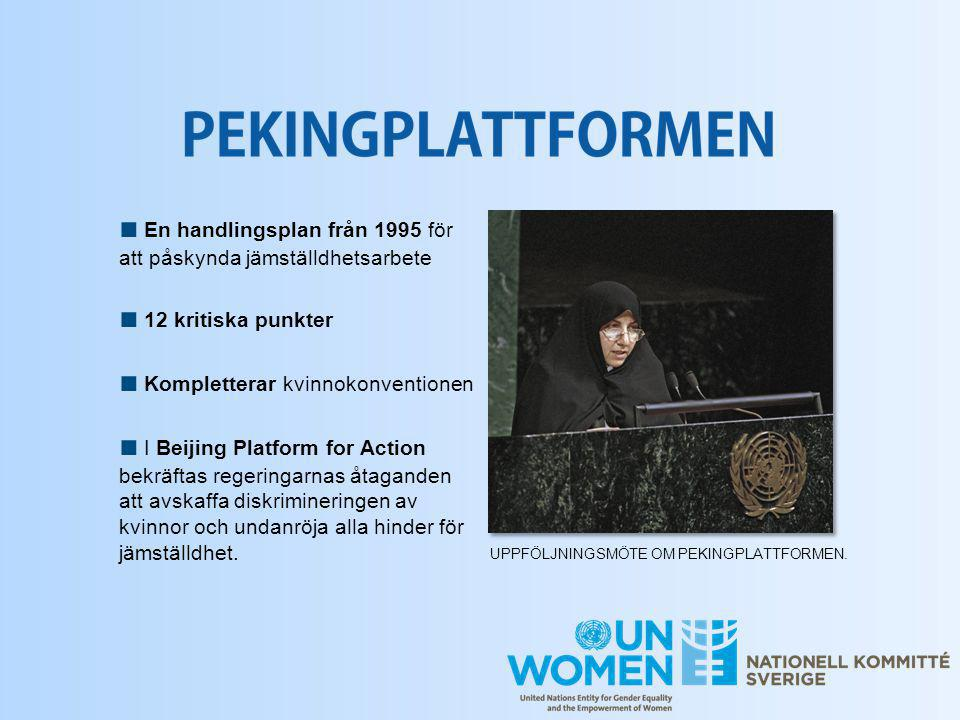 ■ En handlingsplan från 1995 för att påskynda jämställdhetsarbete