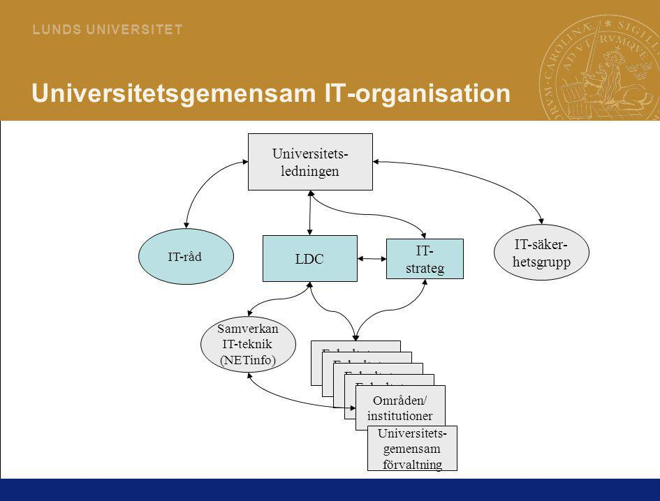 Universitetsgemensam IT-organisation