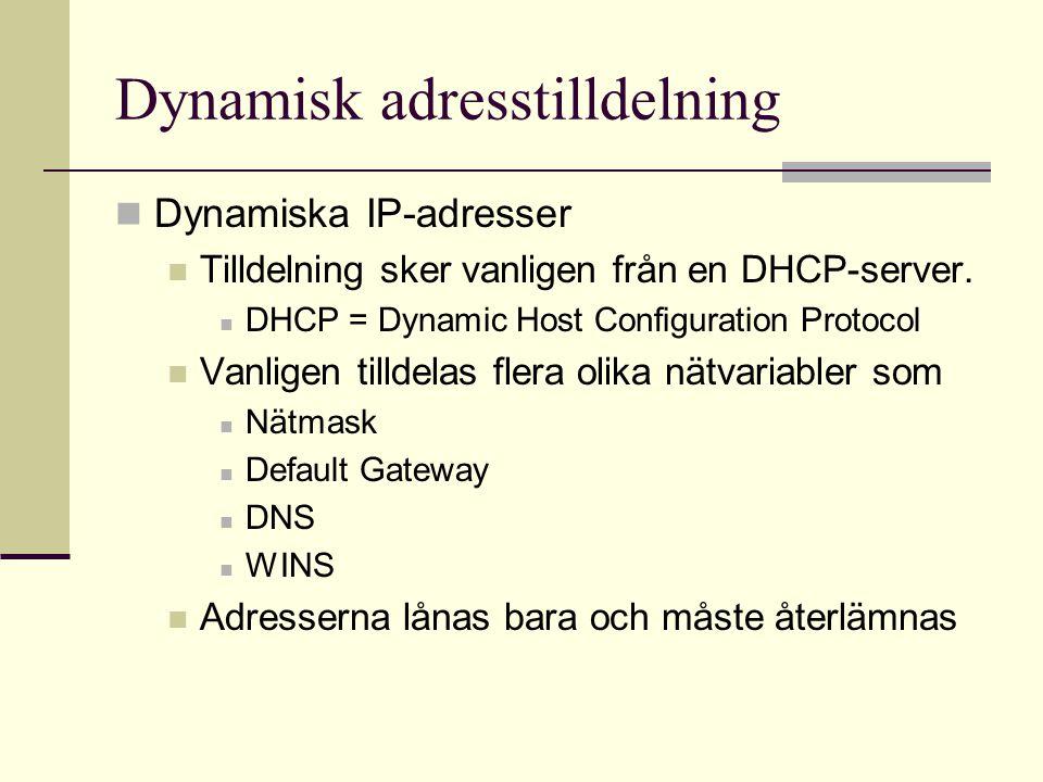 Dynamisk adresstilldelning