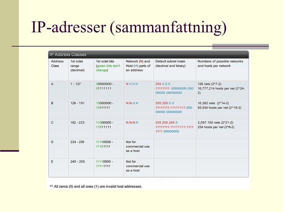 IP-adresser (sammanfattning)