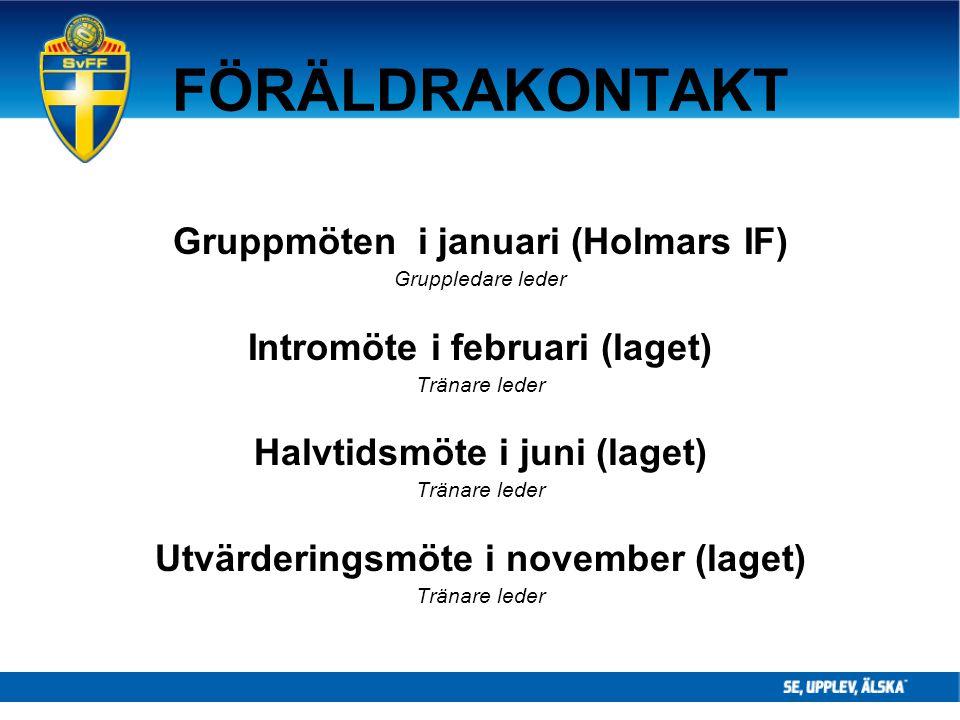 FÖRÄLDRAKONTAKT Gruppmöten i januari (Holmars IF)