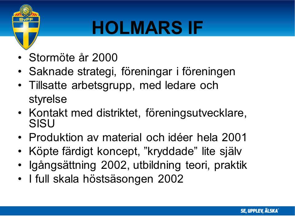 HOLMARS IF Stormöte år 2000 Saknade strategi, föreningar i föreningen