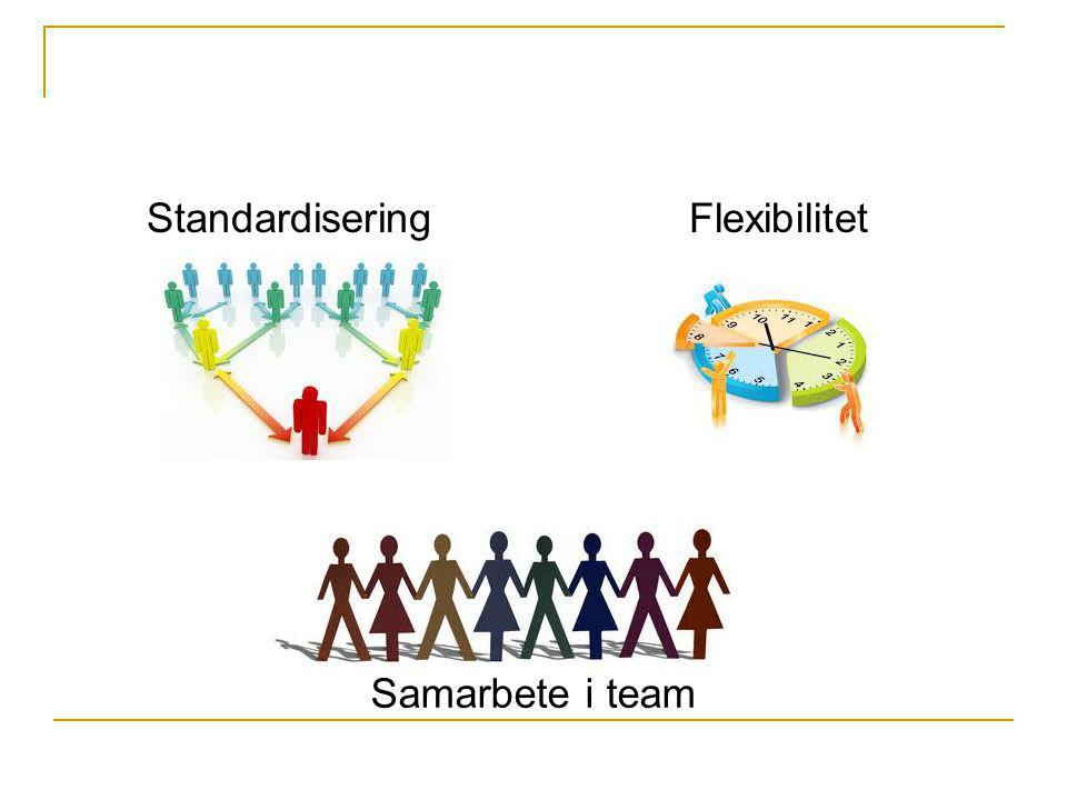 Standardisering Flexibilitet Samarbete i team