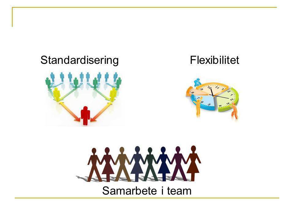 Standardisering Flexibilitet Samarbete i team