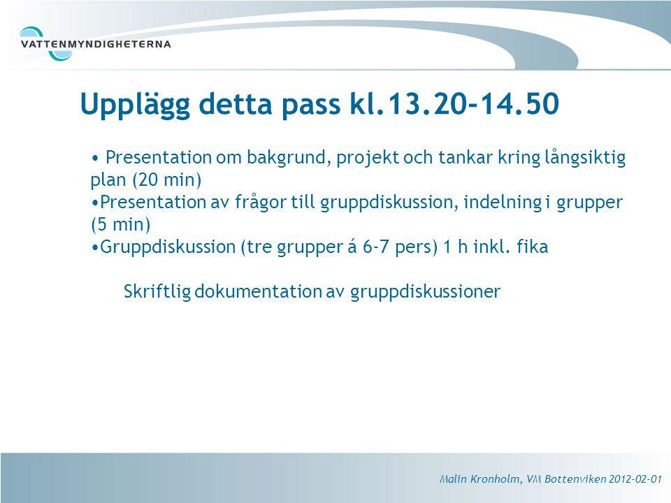 Upplägg detta pass kl.13.20-14.50 Presentation om bakgrund, projekt och tankar kring långsiktig plan (20 min)